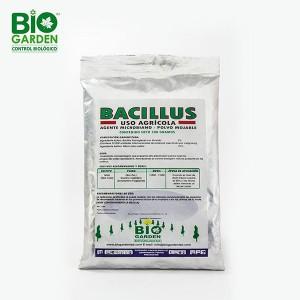 bacillus-metalica-sola