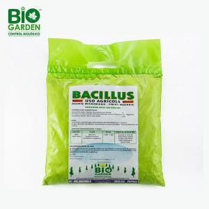bacillus-verde-solo